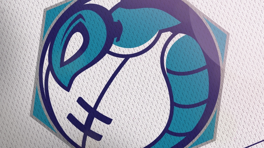 Addison Foote Charlotte Hornets NBA Logo Redesign Mock-Up
