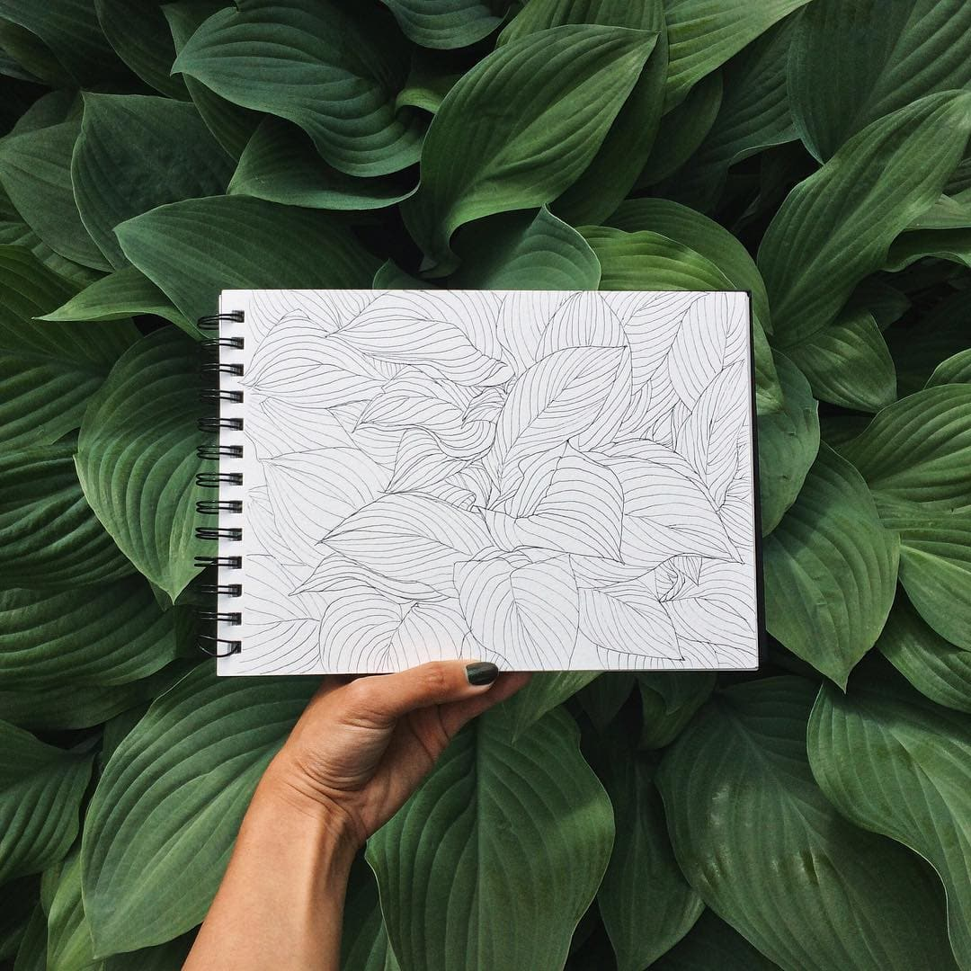 Leaves Illustration by Hannah Jesus