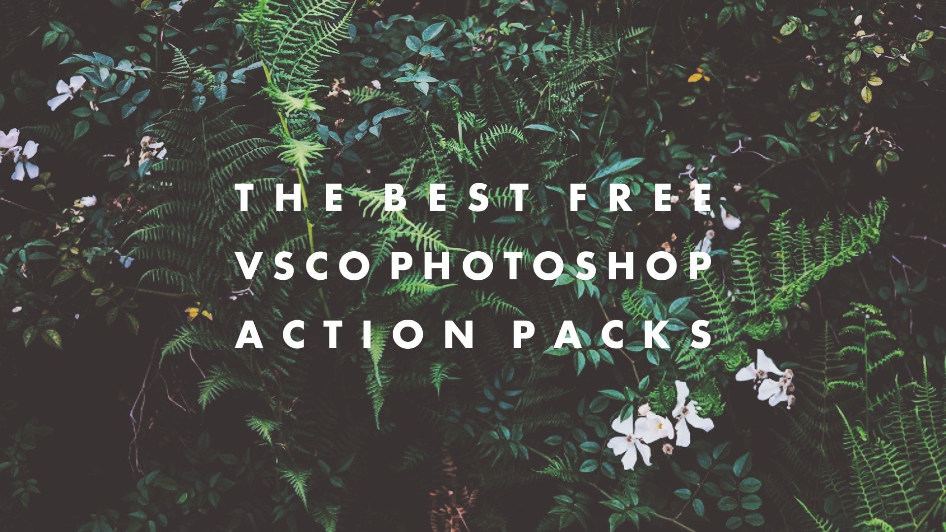 The Best Free VSCO Photoshop Actions