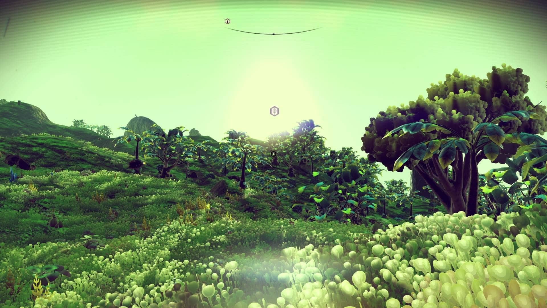 Lush Green Planet Screenshot - No Mans Sky