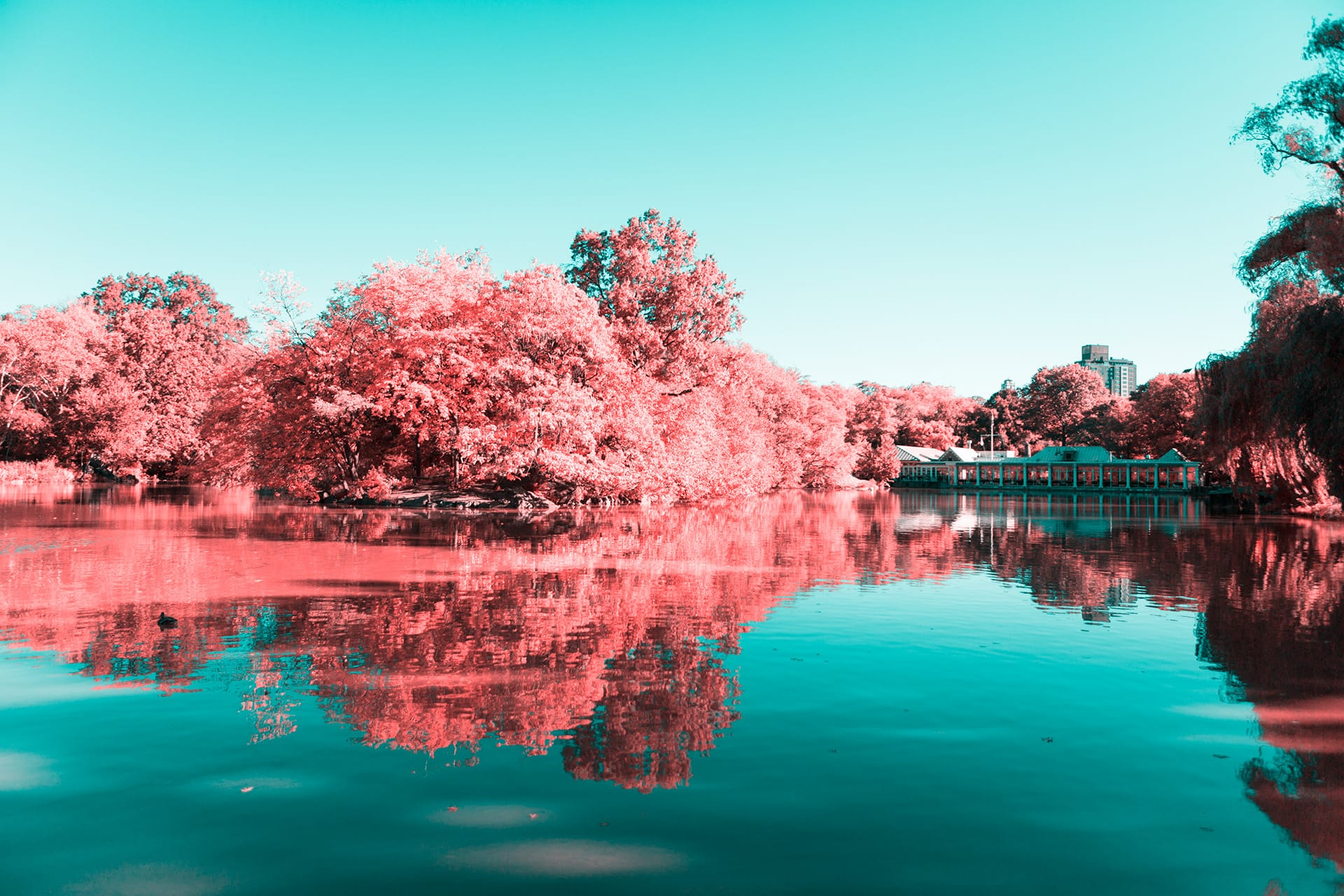 Pink Boathouse - Central Park Photography