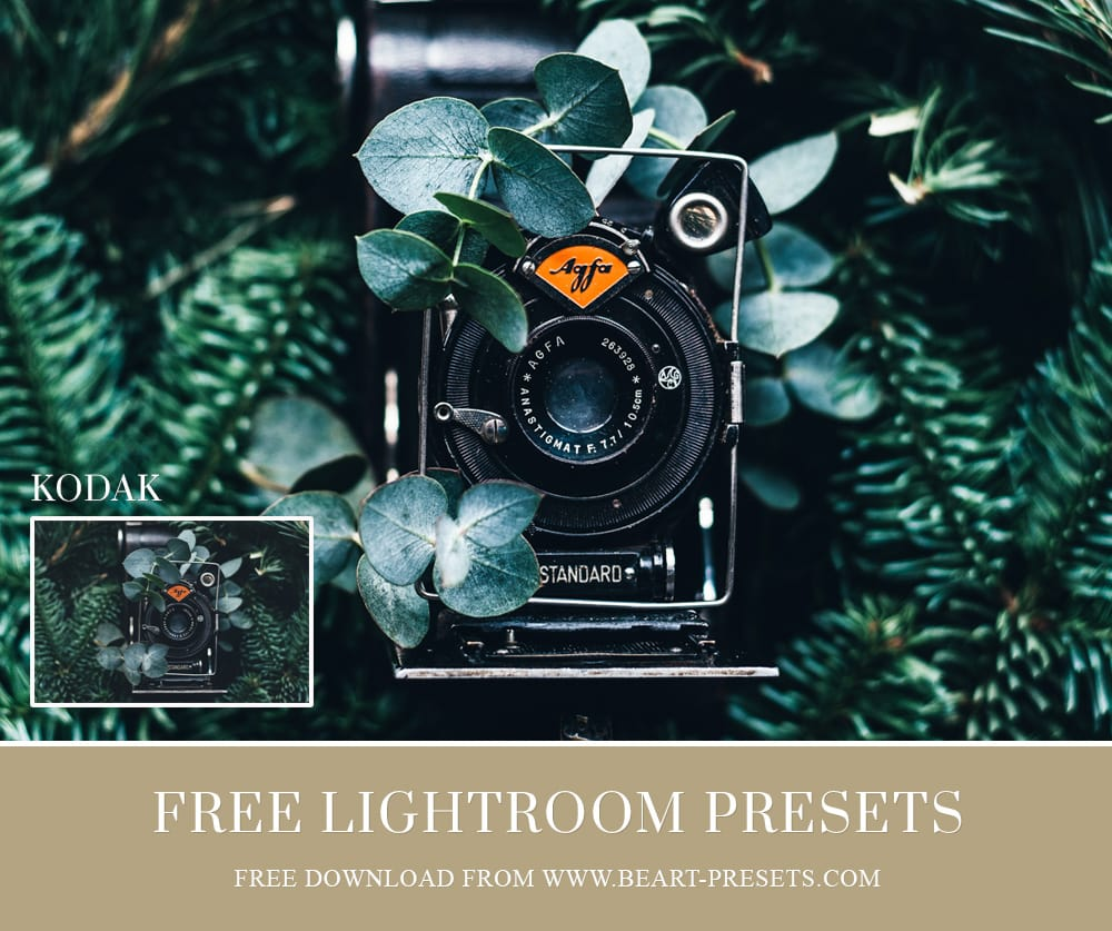 38 Free Lightroom Presets by BeArt-Presets