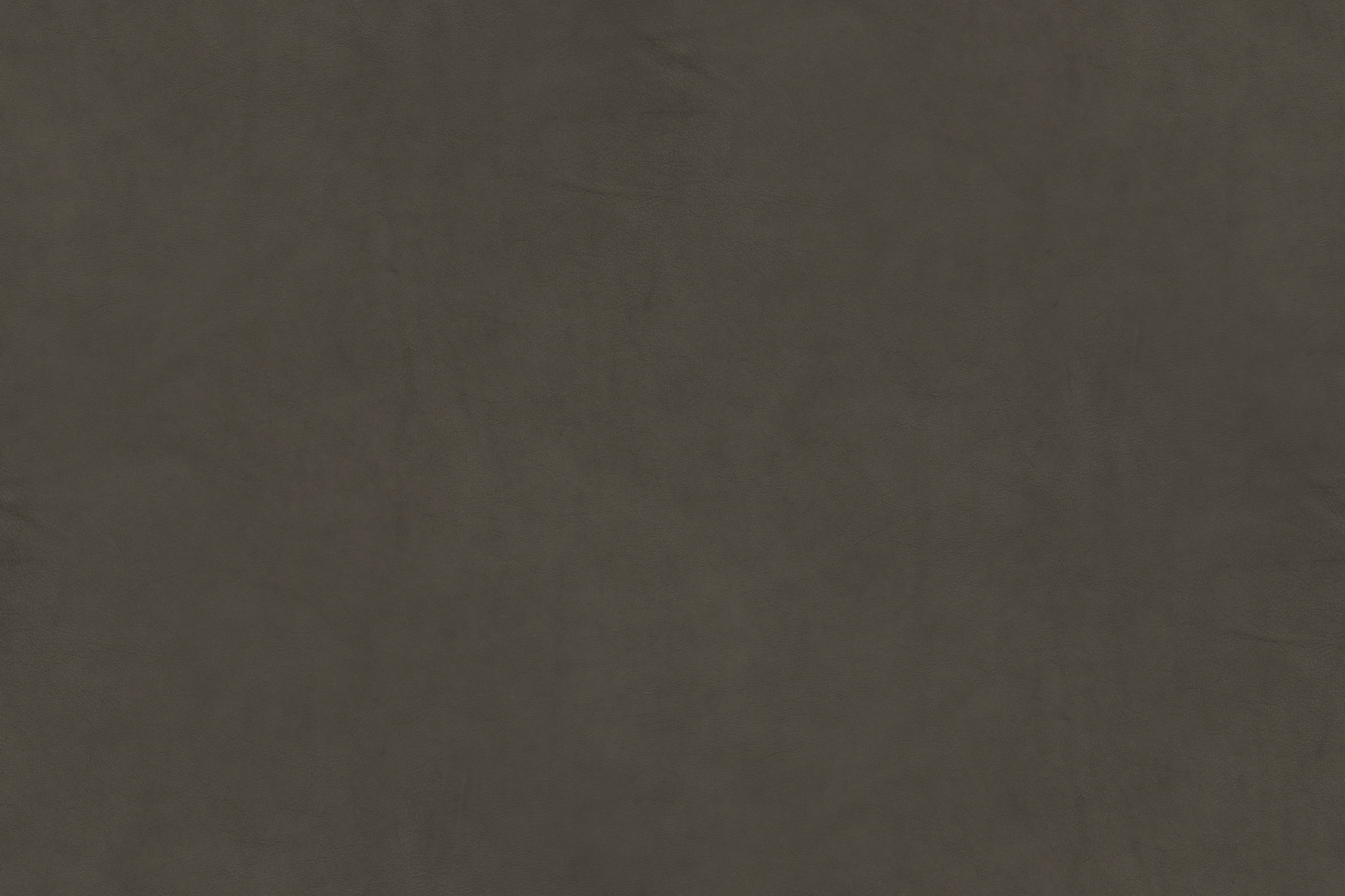 campo-series-grey-leather-texture