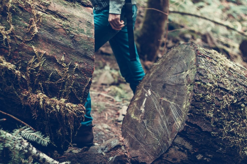 Hipster walking in the woods
