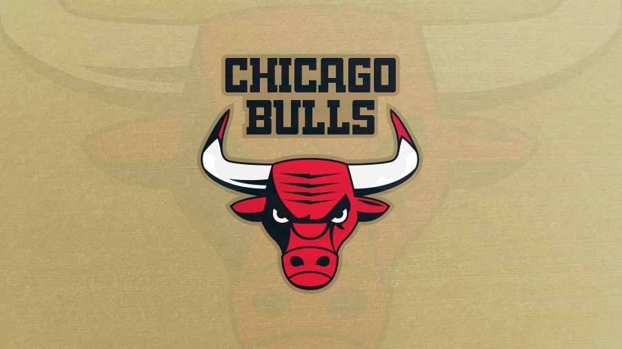 Addison Foote Chicago Bulls NBA Logo Redesign