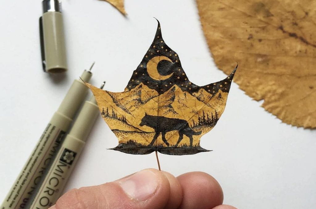 Leaf Illustration (Cropped) by Sam Larson