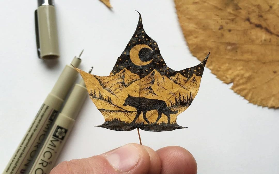 Hand-Drawn Nature-Themed Illustrations by Sam Larson