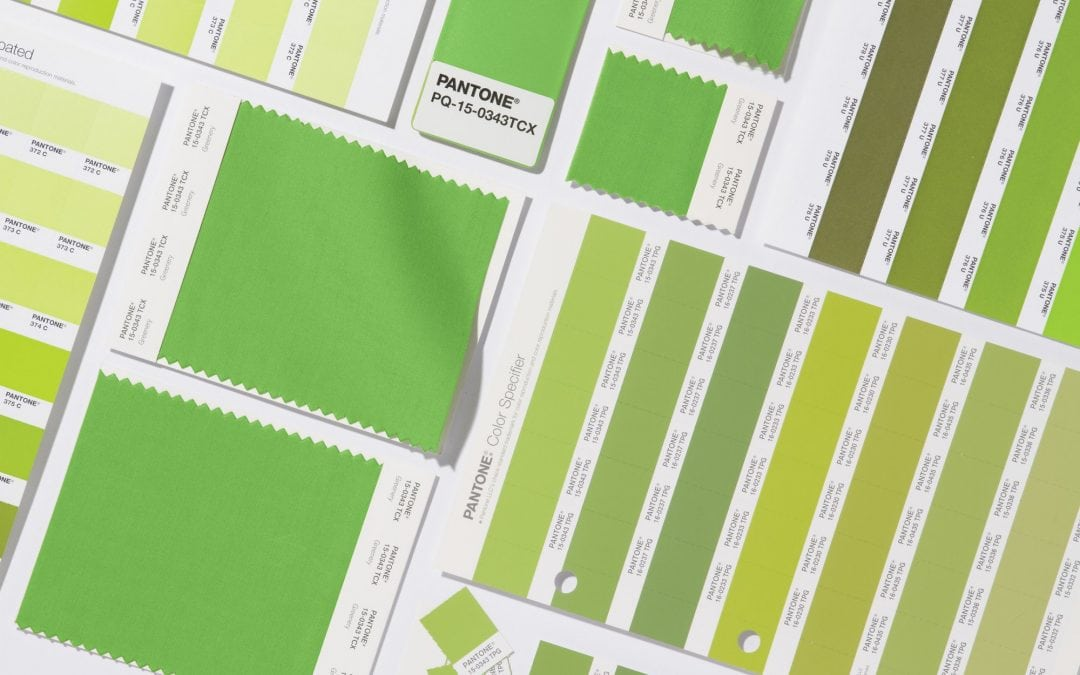 Why Is 'Greenery' Pantone's 2017 Color of the Year?