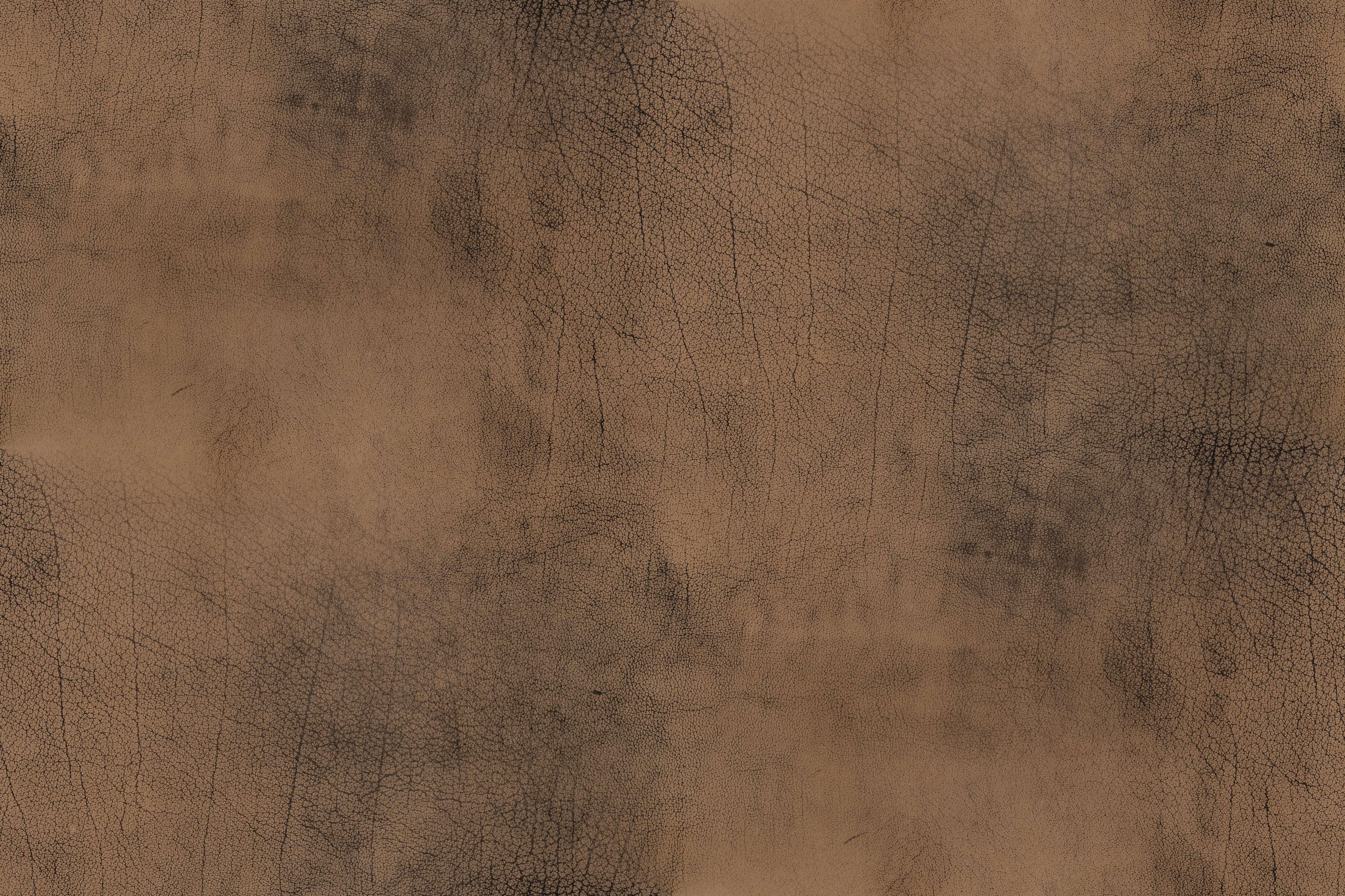 buffalo leather texture