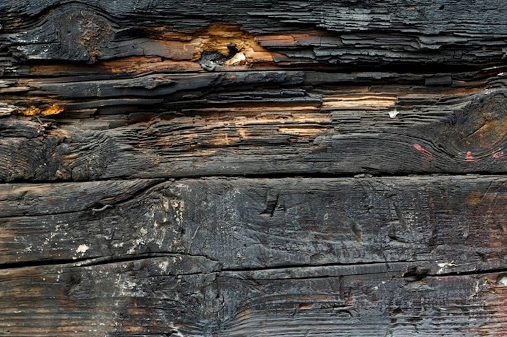 burnt-plank-wood