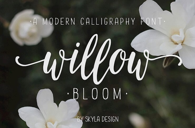 72+ Best Calligraphy Fonts Around The Web 2019 - Hipsthetic