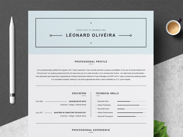 clean-resume-template-simple-cv