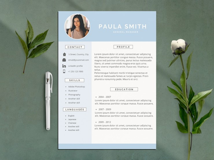 clean-simple-resume-cv-tmp-vol-01